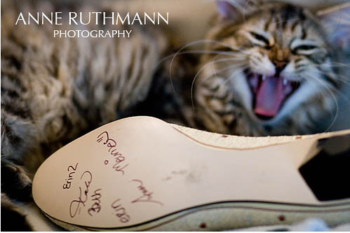 I Have Been A Fan Of Anne Ruthman S Crisp And Personal Photography