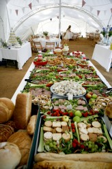 Picnic wedding 94