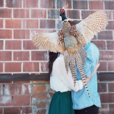 taxidermy_mieshphotography (9)