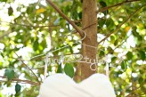 tropical themed wedding flutter glass photography1