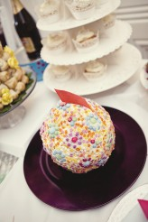 Brighton_Cinema_Wedding_0176
