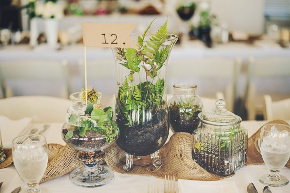 107-TableDecorWithTerrariums_CARLY_BISH_PHOTOGRAPHY-107