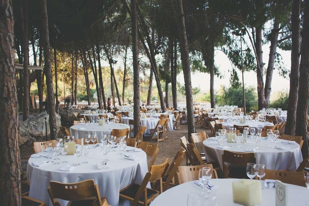 Jewish Forest Wedding: Mor & Amnon · Rock n Roll Bride