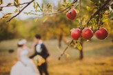 Outdoor Countryside Wedding – Be Light Photography – Dragos & Laura Ludusan  (157)