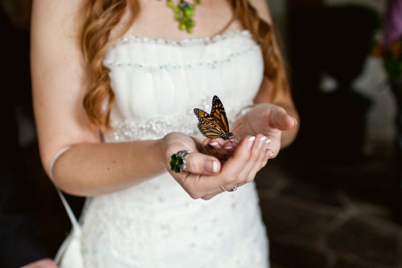 Jess_Shields_Photographer_Butterfly_Release0005