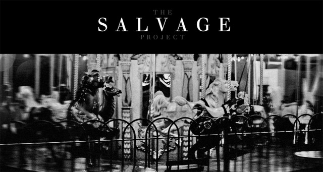 the salvage project
