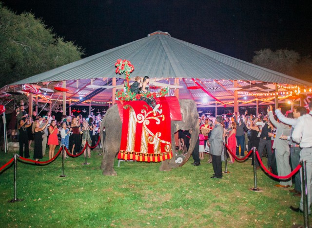 A Carnival And Circus Themed Wedding Reception Rock N Roll Bride