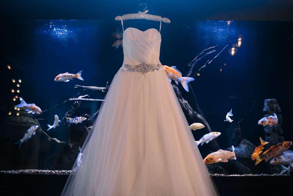 Seattle Wedding Dress Shops 93 Nice Seattle Waterfall Origami wedding