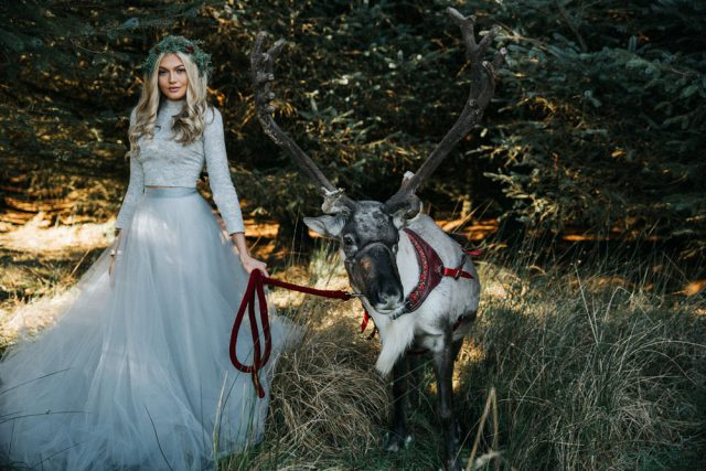 festive-farm-wedding-with-reindeer-3