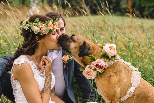 _italian-english-wedding-with-a-puppy-ring-bearer_emily-and-steve-photography-56